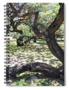 In The Depth Of Enchanting Forest V Spiral Notebook
