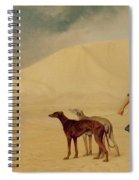 In The Desert Spiral Notebook