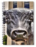 In The Eyes Of The Bull Spiral Notebook