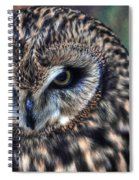 In The Eyes Of The Owl Spiral Notebook