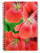 In The Garden. Geranium Spiral Notebook