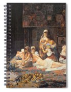 In The Harem Spiral Notebook