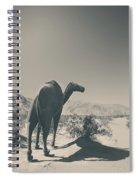 In The Hot Desert Sun Spiral Notebook
