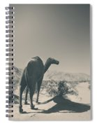 In The Hot Desert Sun Spiral Notebook