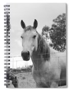 In The Open Air . . .  Spiral Notebook