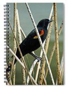 In The Reeds Spiral Notebook