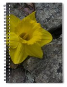 In The Rocks Spiral Notebook