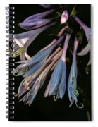 In The Shade Garden Spiral Notebook