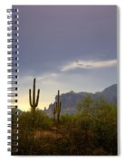 In The Shadows Of The Superstitions  Spiral Notebook