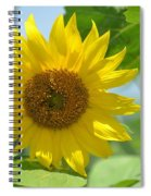 In The Sunflower Field Spiral Notebook