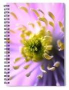 Clematis 1 Spiral Notebook