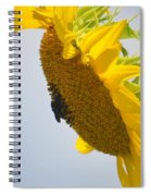 In The Wind - Sunflower Spiral Notebook