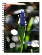 In Time Spiral Notebook