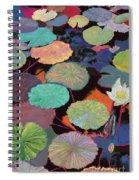 Ina Magic Spiral Notebook