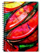Inca Spiral Notebook