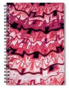 Incan Pattern Spiral Notebook