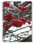 Incased Berries Spiral Notebook