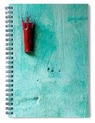 Incense 04 Spiral Notebook