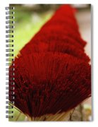 Incense Sticks Spiral Notebook