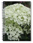 Incrediball Hydrangea Spiral Notebook
