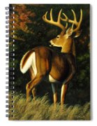 Whitetail Buck - Indecision Spiral Notebook
