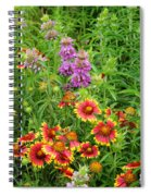 Indian Blankets And Lemon Horsemint Spiral Notebook