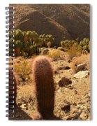 Indian Canyon Spiral Notebook