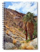 Indian Canyons View With Two Palms Spiral Notebook