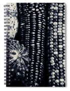 Indian Corn And Squash In Black And White Spiral Notebook