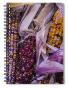 Indian Corn Harvest Spiral Notebook