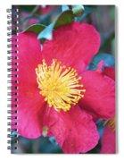 Indian Hawthorne Spiral Notebook
