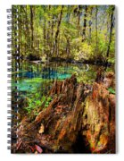 Indian Summer At Buford Spring Spiral Notebook
