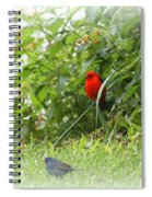Indigo Bunting And Scarlet Tanager 2 Spiral Notebook