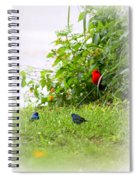 Indigo Bunting And Scarlet Tanager Spiral Notebook