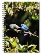 Indigo Bunting - Img 431-013 Spiral Notebook