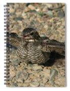 Industrial Nighthawk Spiral Notebook