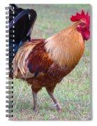 Infamous Kauai Chicken Spiral Notebook