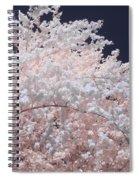 Inferred Spring Spiral Notebook