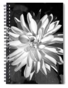 Infrared - Flower 03 Spiral Notebook