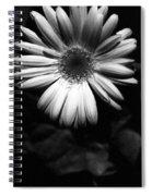 Infrared - Flower 05 Spiral Notebook