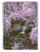 Infrared Mountain Stream Spiral Notebook