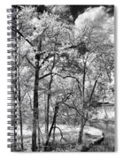 Infrared Stream Spiral Notebook
