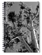 Infrared Tree Spiral Notebook