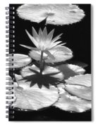 Infrared - Water Lily 02 Spiral Notebook