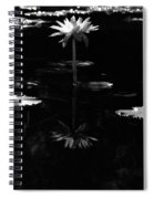 Infrared - Water Lily 03 Spiral Notebook