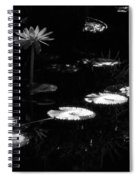 Infrared - Water Lily And Lily Pads Spiral Notebook