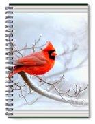 Ing 2559-16 Spiral Notebook