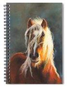 Ingalyl Spiral Notebook