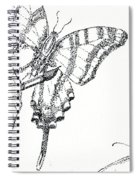 Inked Swallowtail Spiral Notebook