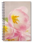 Inner Beauty - Pink Tulips Spiral Notebook